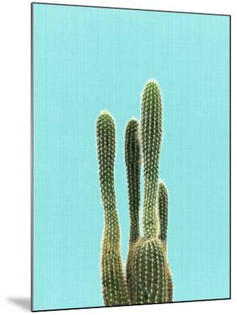 Cactus On Blue-LILA X LOLA-Mounted Art Print