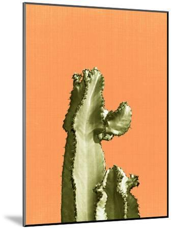Cactus On Orange-LILA X LOLA-Mounted Art Print