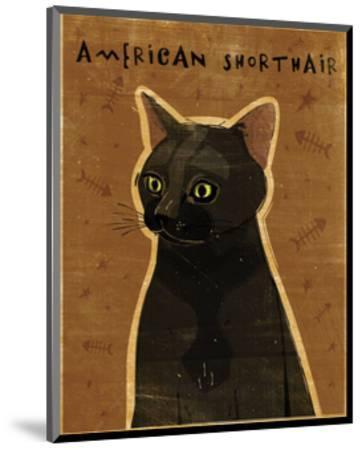 American Shorthair-John W^ Golden-Mounted Art Print