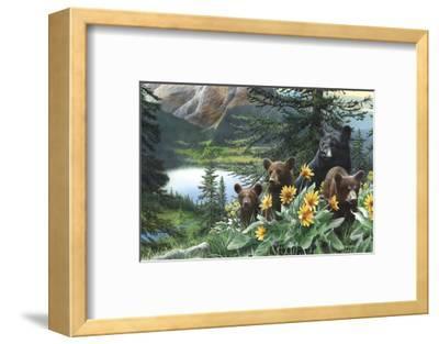 Basking in the Balsams-Kevin Daniel-Framed Art Print