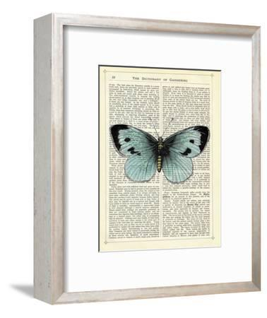 Blue Butterfly-Marion Mcconaghie-Framed Art Print