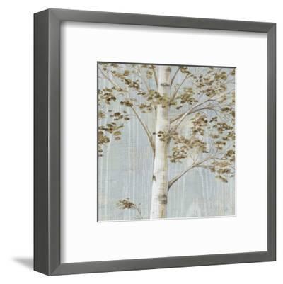 Birch Study II-Daphn? B-Framed Art Print
