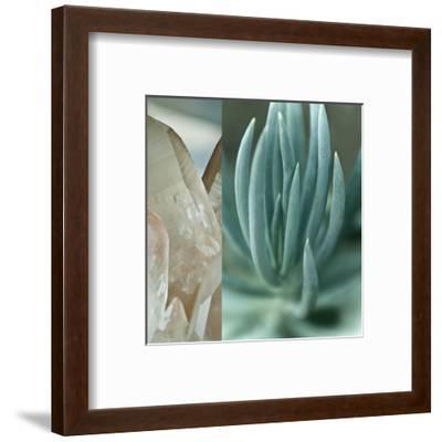 Desert Jewels I-Sidney Aver-Framed Art Print