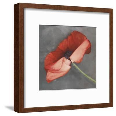 Rouge-Erin Clark-Framed Art Print