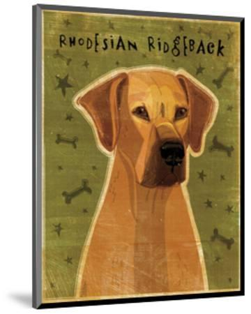 Rhodesian Ridgeback-John W^ Golden-Mounted Art Print