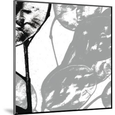 Silver Dollars VI-Erin Clark-Mounted Art Print