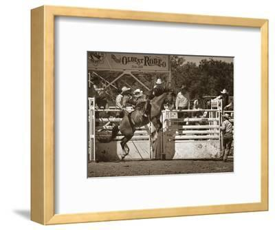 Sidewinder-Barry Hart-Framed Art Print