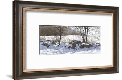 Stonerow-Ray Hendershot-Framed Art Print