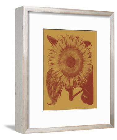 Sunflower 15-Botanical Series-Framed Art Print