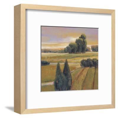 Summer Cypress-Adina Langford-Framed Art Print