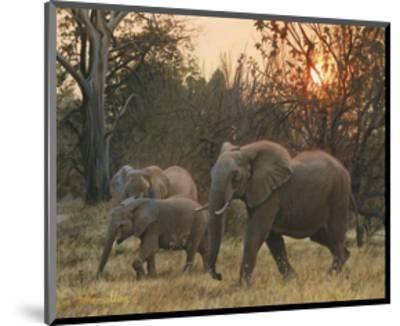 Sundown Elephants-John Mullane-Mounted Art Print