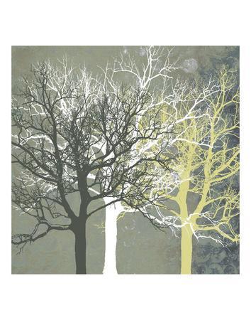 Tranquil Forest-Erin Clark-Framed Art Print