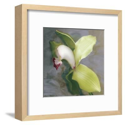 Tropicale-Erin Clark-Framed Art Print