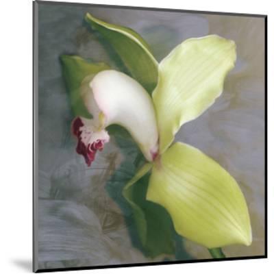 Tropicale-Erin Clark-Mounted Art Print