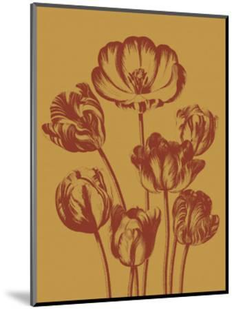 Tulip 15-Botanical Series-Mounted Art Print