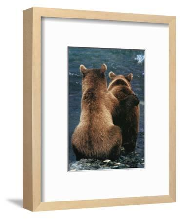 Two Bear Cubs-Art Wolfe-Framed Art Print