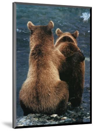 Two Bear Cubs-Art Wolfe-Mounted Art Print