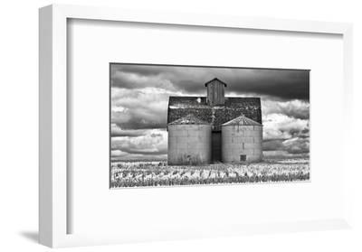 Two Corn Cribs-Trent Foltz-Framed Art Print