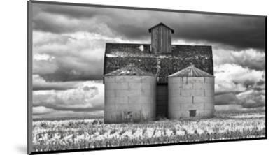Two Corn Cribs-Trent Foltz-Mounted Art Print