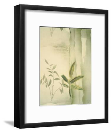 Vizcaya Ferns II-Muriel Verger-Framed Art Print
