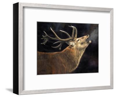 Winter Stag-David Stribbling-Framed Art Print