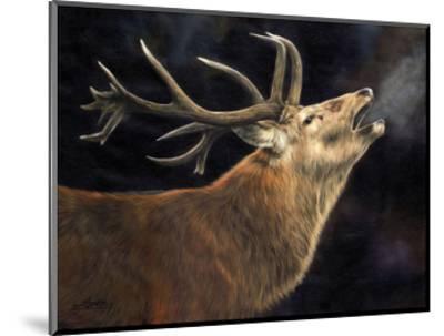 Winter Stag-David Stribbling-Mounted Art Print