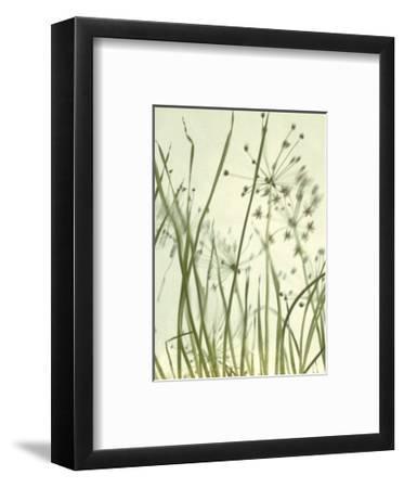 Watery Grasses 2-Jenny Kraft-Framed Art Print