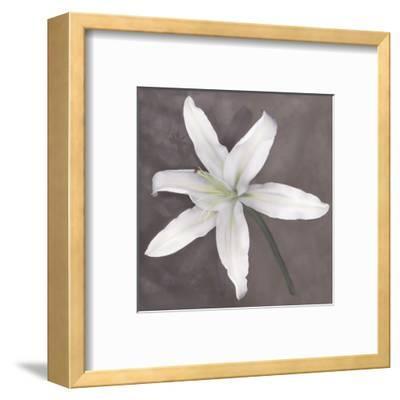 White Lily-Erin Clark-Framed Art Print