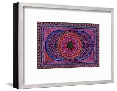 Late Blooming-Lawrence Chvotzkin-Framed Art Print