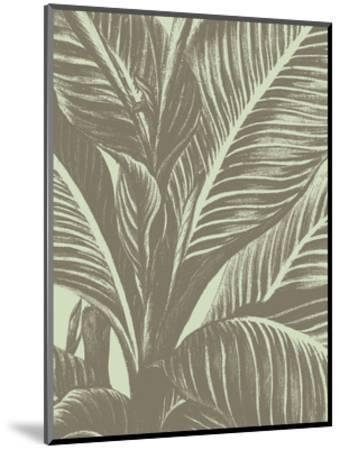 Leaf 11-Botanical Series-Mounted Art Print