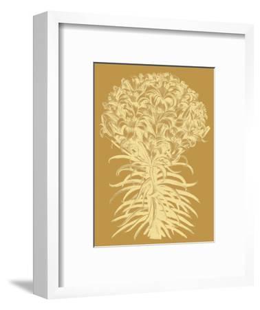 Lilies 20-Botanical Series-Framed Art Print