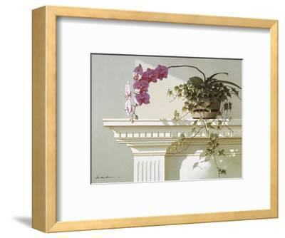 Mantelpiece Orchid-Zhen-Huan Lu-Framed Art Print
