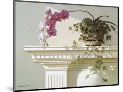 Mantelpiece Orchid-Zhen-Huan Lu-Mounted Art Print
