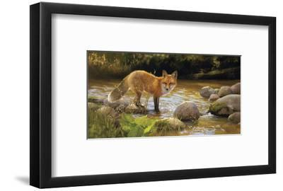 Morning at Honey Creek-Bonnie Marris-Framed Art Print
