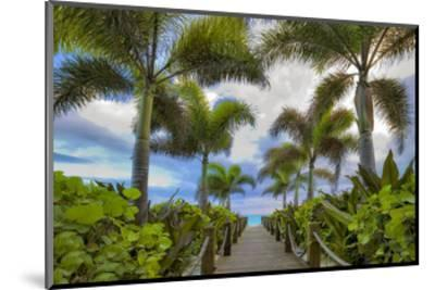 Paradise Path-Dennis Frates-Mounted Art Print
