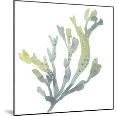 Sea Tangle V-Sandra Jacobs-Mounted Giclee Print
