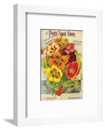 Perry Seed Store Syracuse NY--Framed Art Print