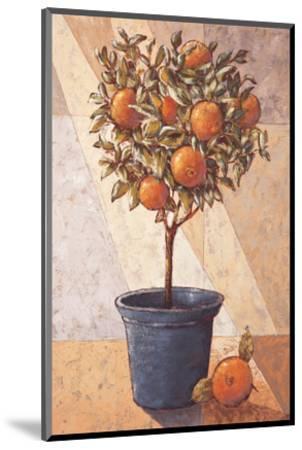 Orangetree-Karsten Kirchner-Mounted Art Print
