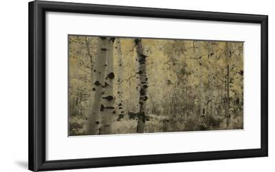 Schwartz - A Wisp of Gold-Don Schwartz-Framed Art Print