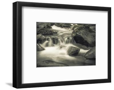 Schwartz - Blue Flowing-Don Schwartz-Framed Premium Giclee Print
