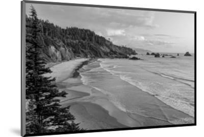 Schwartz - Rugged Coast-Don Schwartz-Mounted Art Print