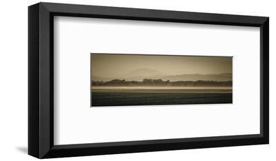 Schwartz - Sauvie Island Serenity-Don Schwartz-Framed Premium Giclee Print