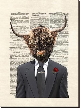 Highlandbull Man-Matt Dinniman-Stretched Canvas Print