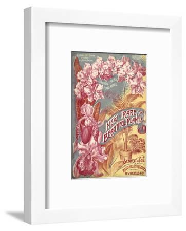 Seibrecht Plants New Rochelle--Framed Art Print