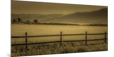 Schwartz - Yampa Valley Morning-Don Schwartz-Mounted Premium Giclee Print