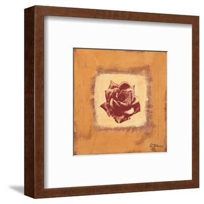 Single Rose-Anna Flores-Framed Art Print