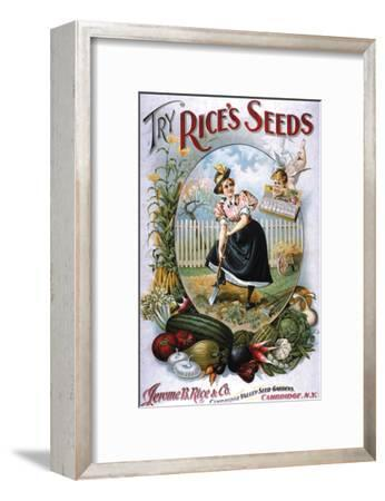 Try Rice's Seeds Cambridge--Framed Premium Giclee Print