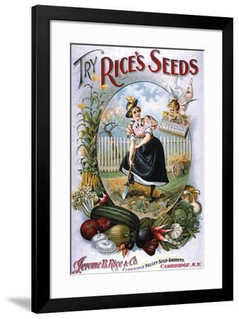 Try Rice's Seeds Cambridge--Framed Art Print