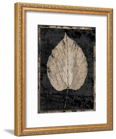 Branch Of Nature-Sheldon Lewis-Framed Art Print