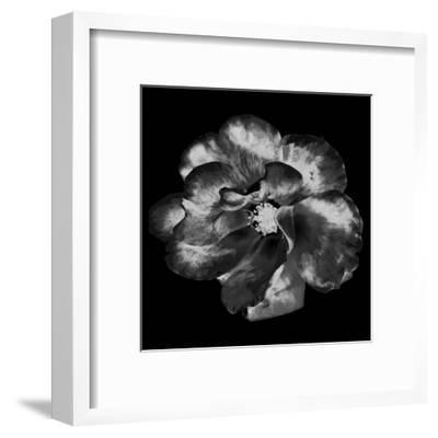 Yard-Sheldon Lewis-Framed Art Print